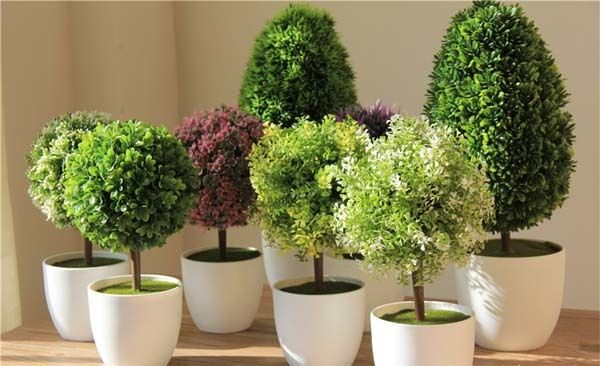 Plantas artificiales decoraci n for Decoracion con plantas crasas