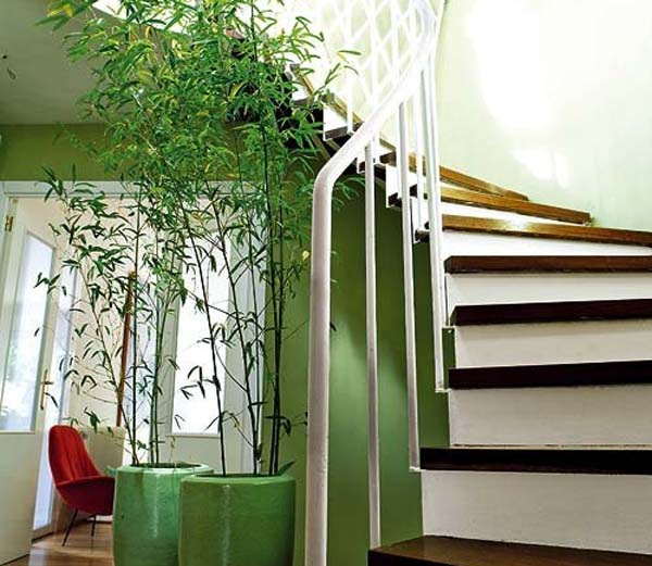 decoracion-con-bambu