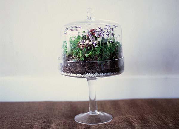 mini-jardines-para-decorar